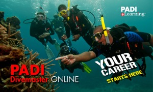 Divemaster Theory with eLearning