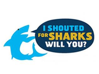 SHout for Sharks