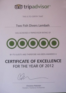 5 Star Certificate of Excellence in Lembeh
